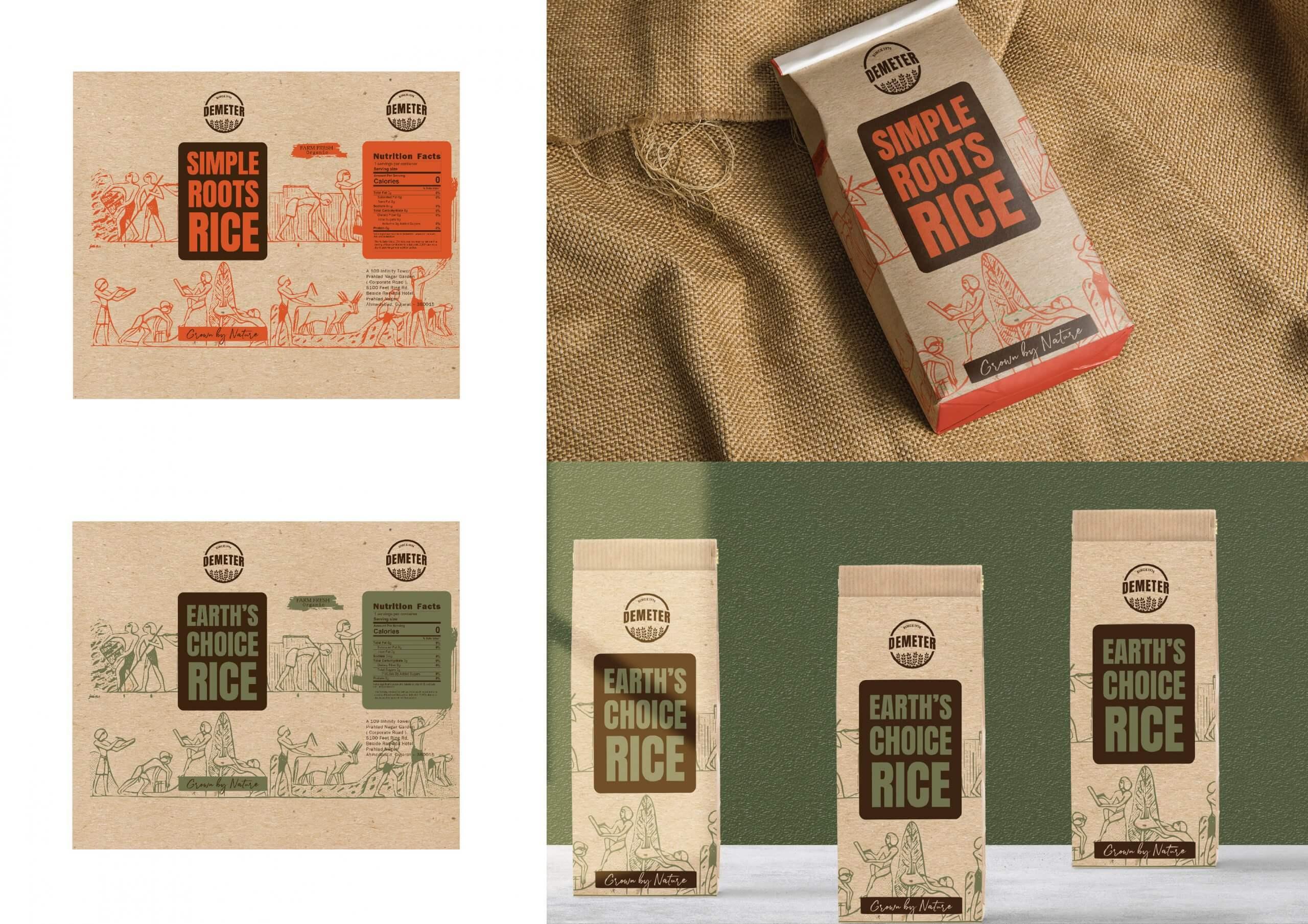 packaging design in ahmedabad